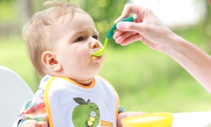 Benefits Of Organic Baby Food Products